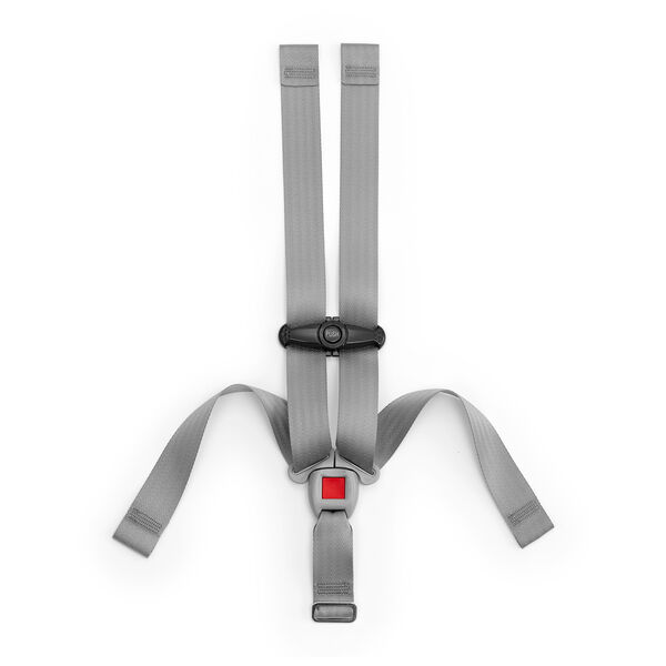 Keyfit & Keyfit 30 - Harness and Chest Clip in