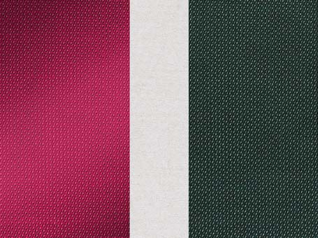 Aster Fabric Swatch