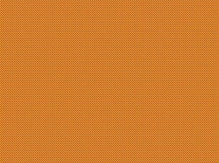 Tangerine Fashion